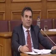 Ομιλία του βουλευτή στην Επιτροπή Παραγωγής και Εμπορίου της Βουλής στο Σχέδιο Νόμου «Διαμόρφωση Φιλικού Αναπτυξιακού Περιβάλλοντος για τις Στρατηγικές και Ιδιωτικές επενδύσεις» – 28/02/2013